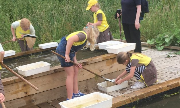 Brownies Buzzing after Bimble Bumble at Brockholes